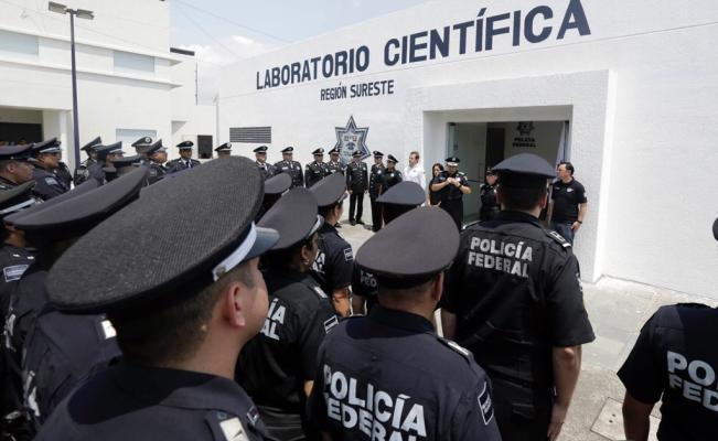 Foto: Policía Federal