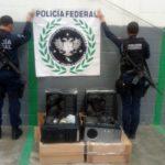 Aseguran cerca de 30 kilos de marihuana en CPUs de computadora, caninos de la Policía Federal en la Ciudad de México.