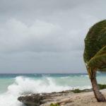 El Comité Nacional de Emergencias realizará, por primera vez, simulacro por impacto de ciclón tropical