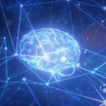 Fujitsu desarrollará la supercomputadora más poderosa de Australia para ayudar a resolver desafíos globales complejos y apremiantes