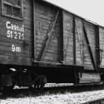 """75 años después de Auschwitz """"La educación del Holocausto y la memoria para una justicia global"""""""