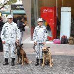 Guardia Nacional y Embajada de Estados Unidos realizan primer seminario de unidades caninas en México