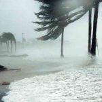 CNPC y Twitter México crean alianza para informar sobre ciclones tropicales en el país