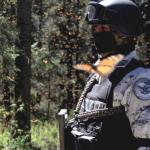Guardia Nacional suma sus capacidades con SEMARNAT y pobladores de Michoacán y EdoMex en la custodia de la mariposa monarca