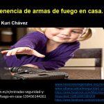 Ponencia: Seguridad y tenencias de armas de fuego en casa