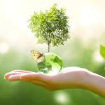 Ricoh inicia en junio el Mes de Desarrollo Sostenible 2021 con iniciativas para el avance de sus logros ODS